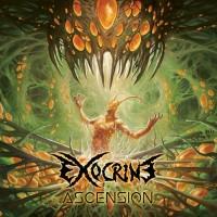 EXOCRINE Ascension